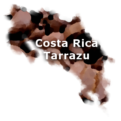 Costa Rica Fancy Tarrazu Coffee 16 oz