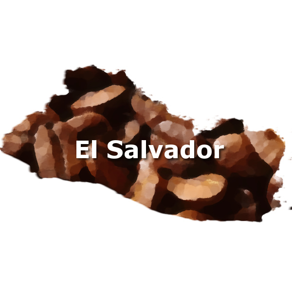 El Salvador Coffee 16 oz