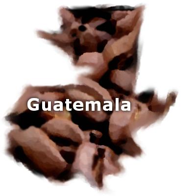 Guatemalan Antigua Coffee 16 oz