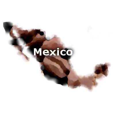 Mexican Chiapas Coffee 16 oz