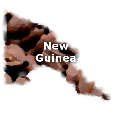 New Guinea Sigri Coffee 16 oz