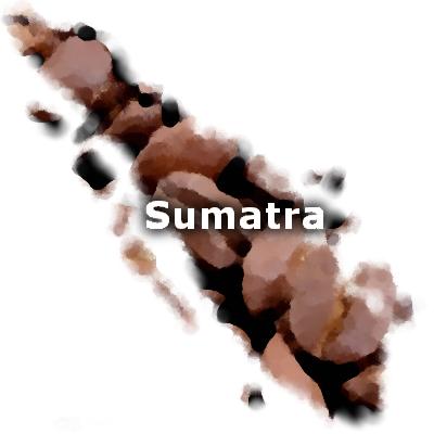 Sumatra Mandheling Coffee 16 oz