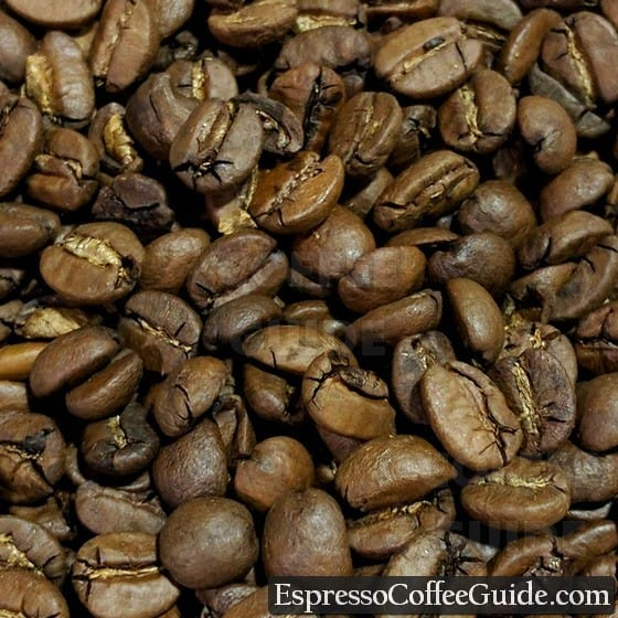 Brazil Santos Coffee Beans - Medium Roast