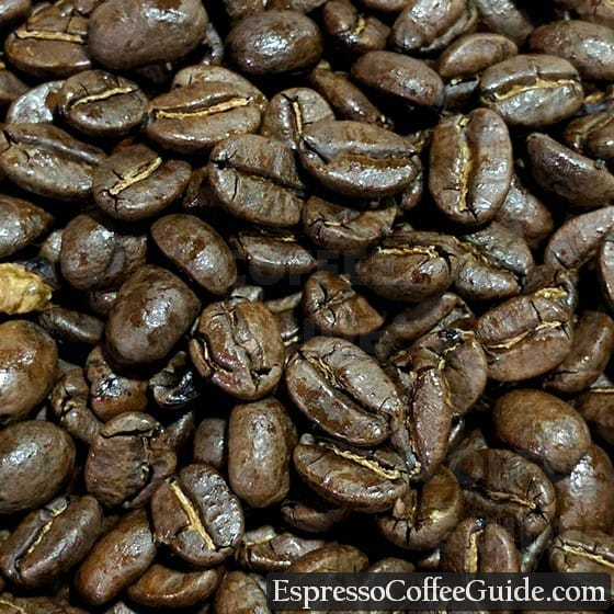 Burundi Coffee Beans - Medium Roast