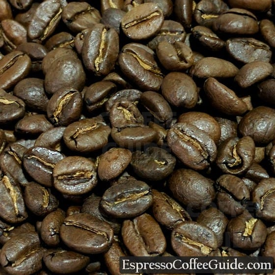 Colombian Organic Coffee Beans - Medium Roast