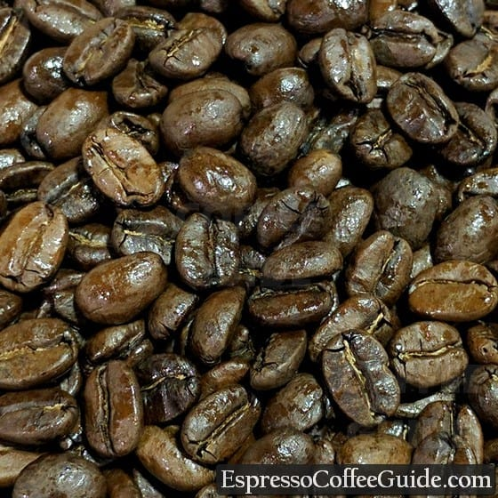 Dominican Organic Coffee Beans - Medium Roast