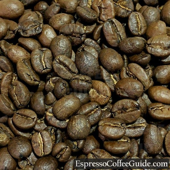 Guatemala Antigua Coffee Beans - Medium Roast