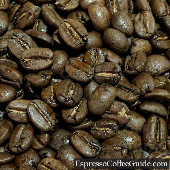 Haiti Blue Pine Forest Coffee Beans - Medium Roast