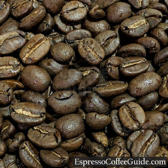 Honduras Coffee Beans - Medium Roast