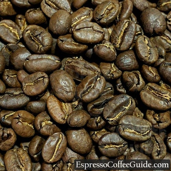 Kenya AA Coffee Beans - Medium Roast