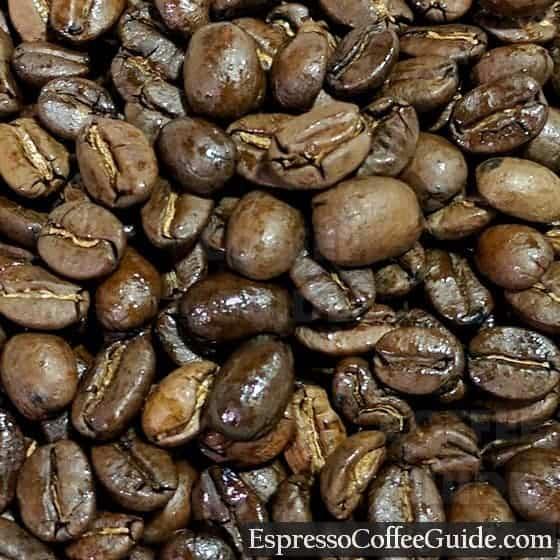 Nicaragua Organic Coffee Beans - Medium Roast