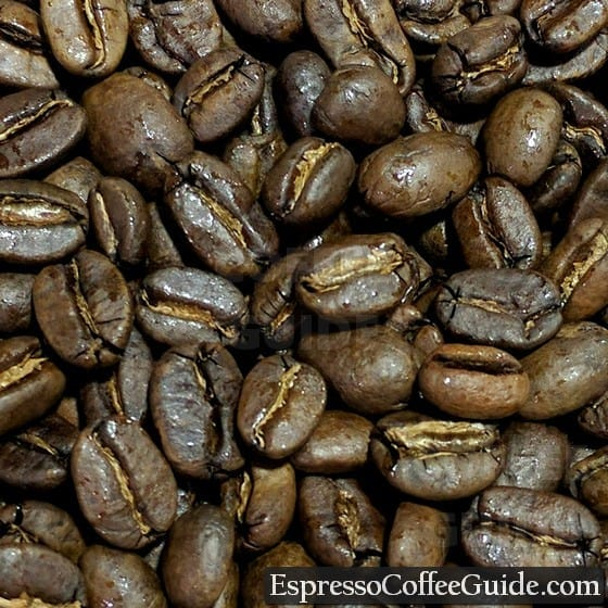 Sumatra Organic Coffee Beans - Medium Roast