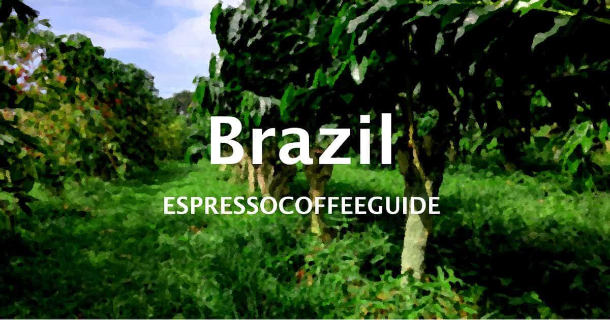 Brazil Coffees