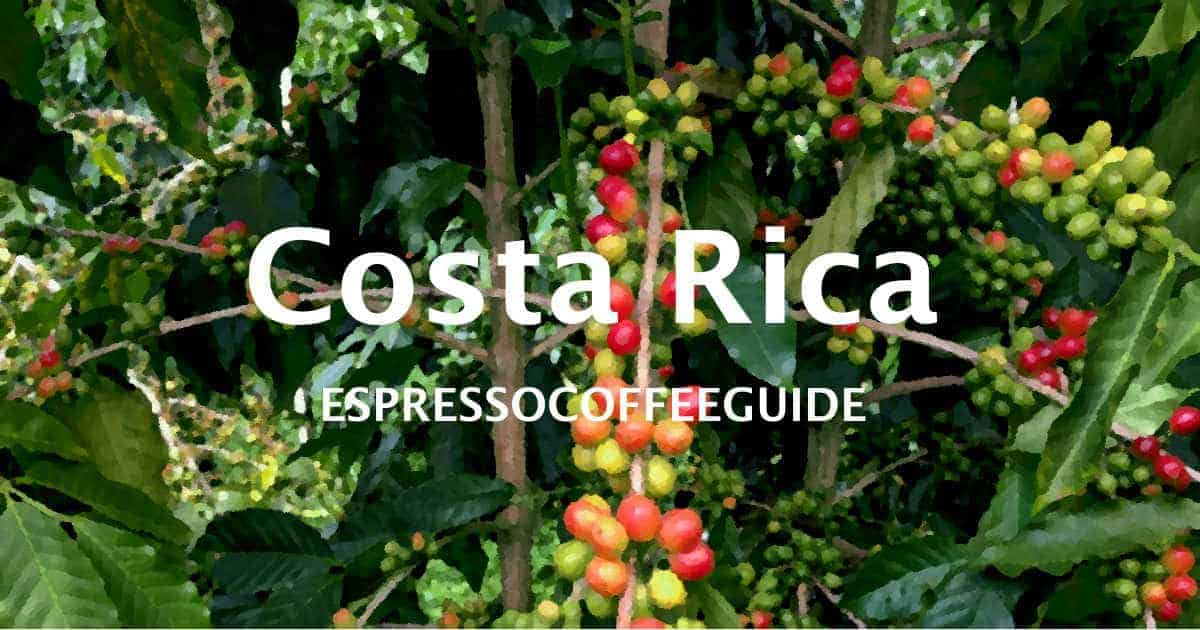 Costa Rica Coffees