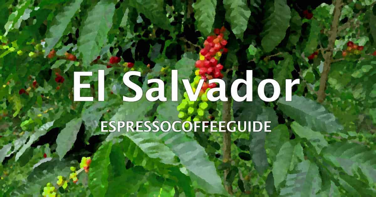 El Salvador Coffees