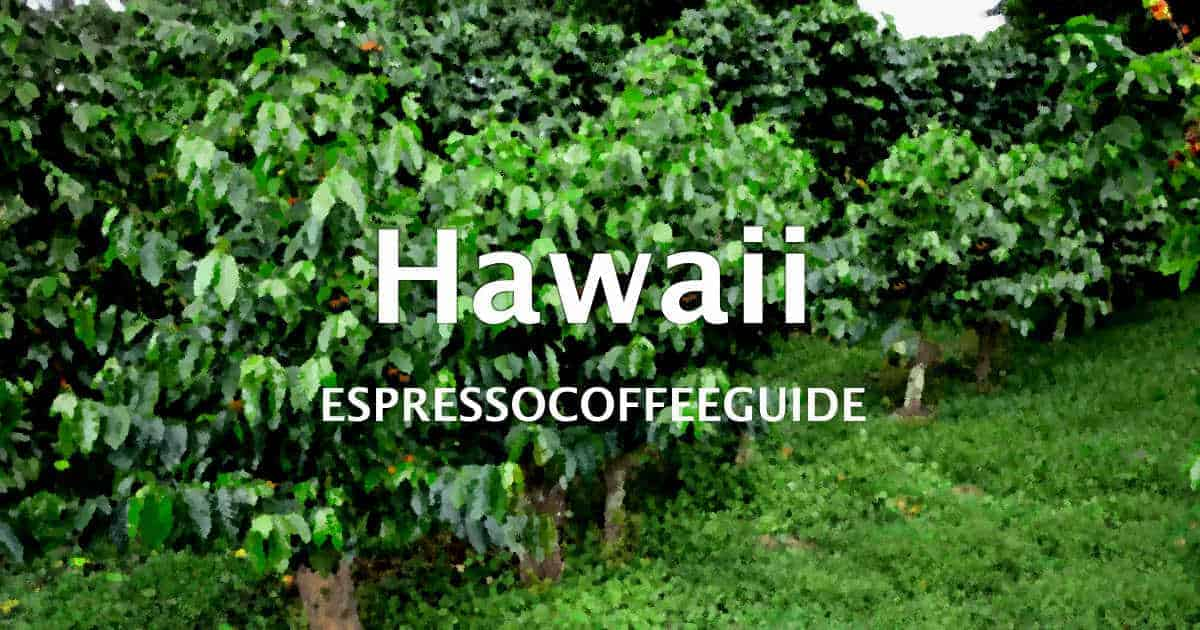 Hawaii Coffees