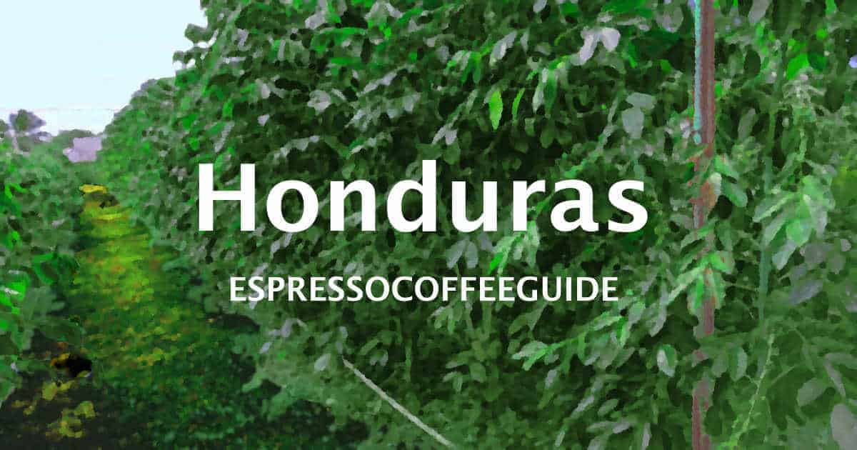 Honduras Coffees