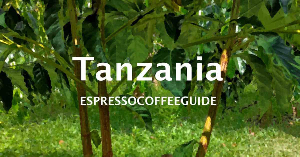 Tanzania Coffees